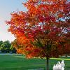 First full day of Autumn on Kingston Plains, Kingston, NH… September 23, 2014.