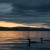 After sunset on Mooselookmeguntic, Rangeley, Maine… June 14, 2014.