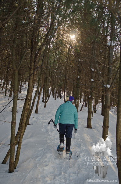Snowshoeing at Stratham Hill… January 5, 2014.