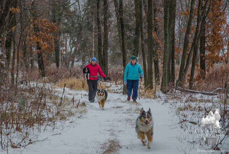 Today on Boston Hill with the girls… December 30, 2015.
