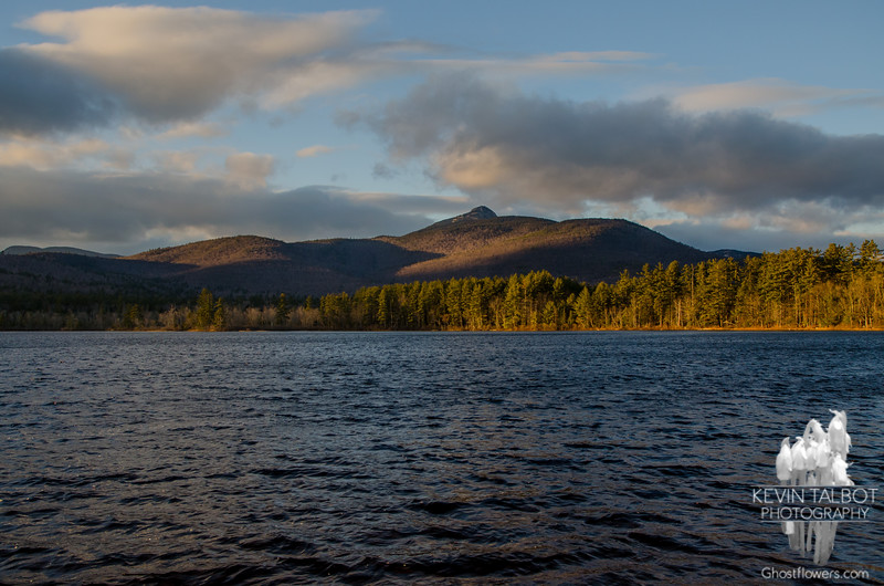 Late afternoon light and a cold northwest breeze on Chocorua Lake today… November 29, 2015.