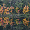 How beautiful the leaves grow old. How full of light and color are their last days.<br /> John Burroughs-Hatch Pond… October 12, 2015.