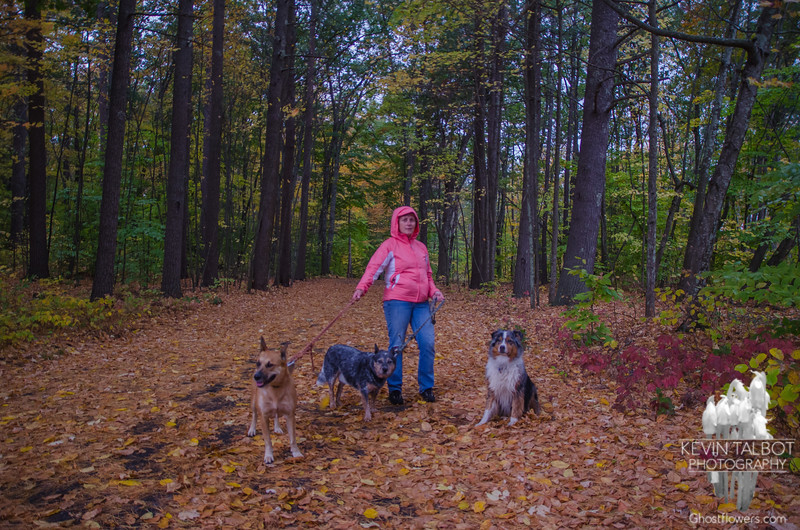 Today at the park in the rain… October 22, 2015.