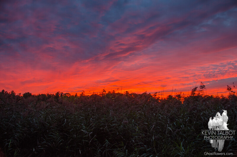 Sunset tonight from the marsh… October 1, 2015.
