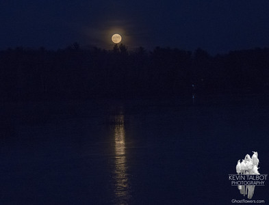 Full Beaver Moon over an ice-crusted Powow… November 25, 2015.