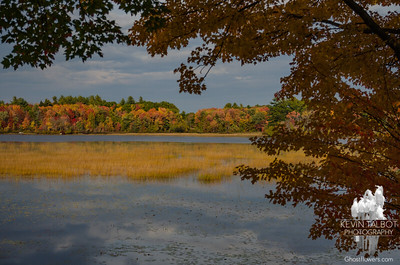 Same pond, different day... October 16, 2016.
