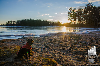Wicket's First Christmas Eve Sunset at Kingston State Park... Merry Christmas from Wicket! December 24, 2016.