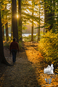 Sunset walk with Cooper at Kingston State Park... October 12, 2016.