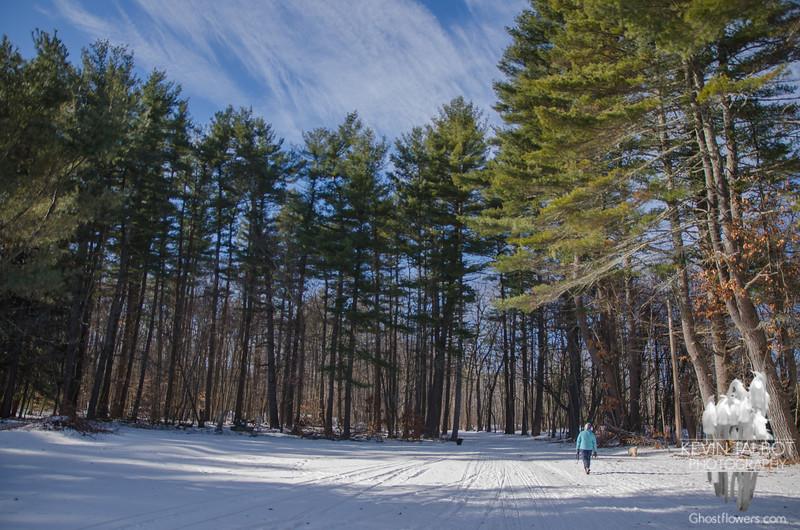 Bright sun and beautiful skies at Kingston State Park… January 20, 2016.