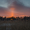 Fiery sun-pillar over the marsh as we bid farewell to the blizzard... February 13, 2017.