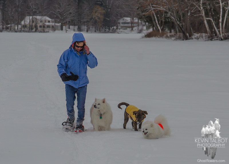 More snow-shoeing on the Powow today with Auntie and her pups Bella & Blizzard... February 11, 2017.
