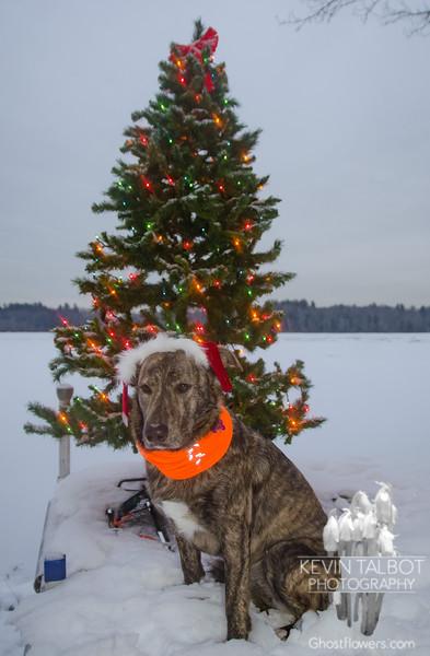 Ready for Santa... December 18, 2017.