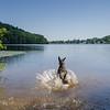 Splashdown today on Lake Gardner... August 30, 2017.