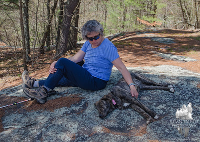 Warm spring day, long walk for puppies, cool stone & shade-BONK... April 24, 2017.