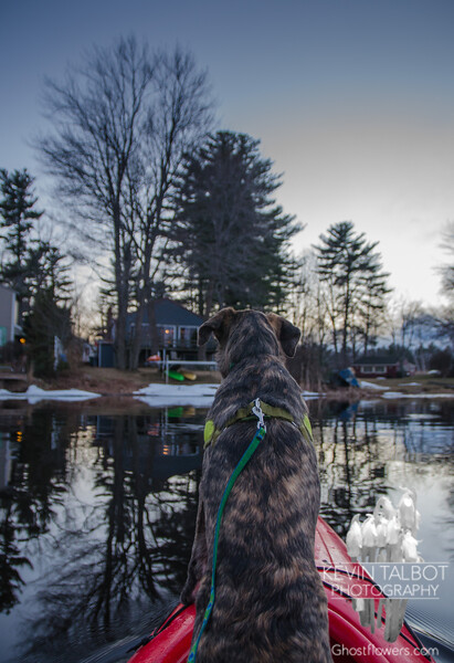 Home fire's burning after her first sunset paddle... March 3, 2017.