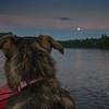 Moonrise tonight on the Powow... July 26, 2018.