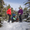 Intrepid hikers & dogs today on Northeast Cannonball... January 4, 2019.