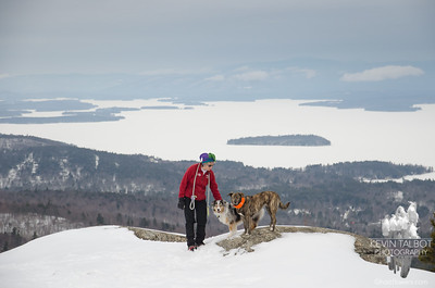 A rare quiet moment for the dogs today above Lake Winnipesaukee... March 14, 2019.