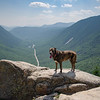 Today high above Crawford Notch... August 25, 2021.