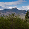 Our View of the Chief Today While Walking Dogs- Mount Chocorua... May 11, 2021.