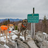 Riley & Wicket Today in the Ossipee Range... January 11, 2021.