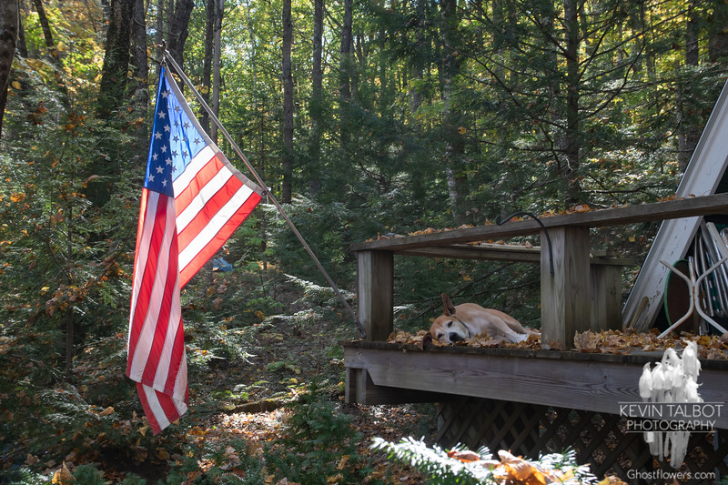 Lazy Afternoon at Camp... October 13, 2021.