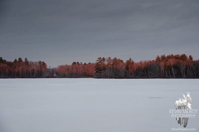 Fire in the Western Sky lit the Trees on the Eastern Shore just before last light today on the Powow... January 6, 2020.