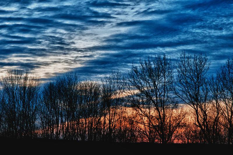 December 20 - Trees, sky, clouds