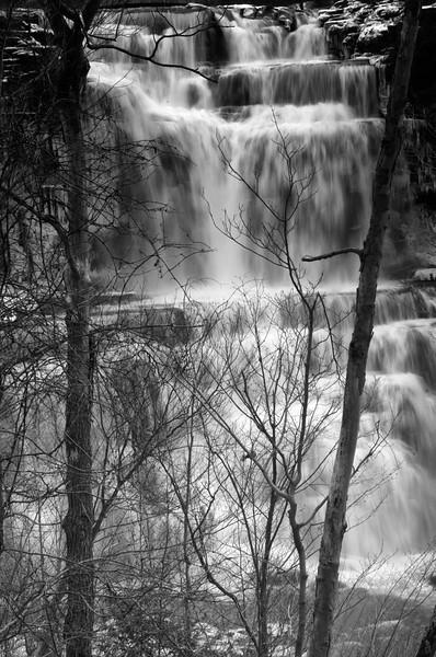 December 30 - Chittenango Falls