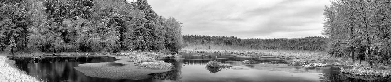 December 8 - One of my favorite places to photograph is Lost Pond in the Brookfield State Lands.  Several of my photos of the day were taken at Lost Pond.  In a few days the open water will be gone into the Spring.  Here's a panoramac of Lost Pond