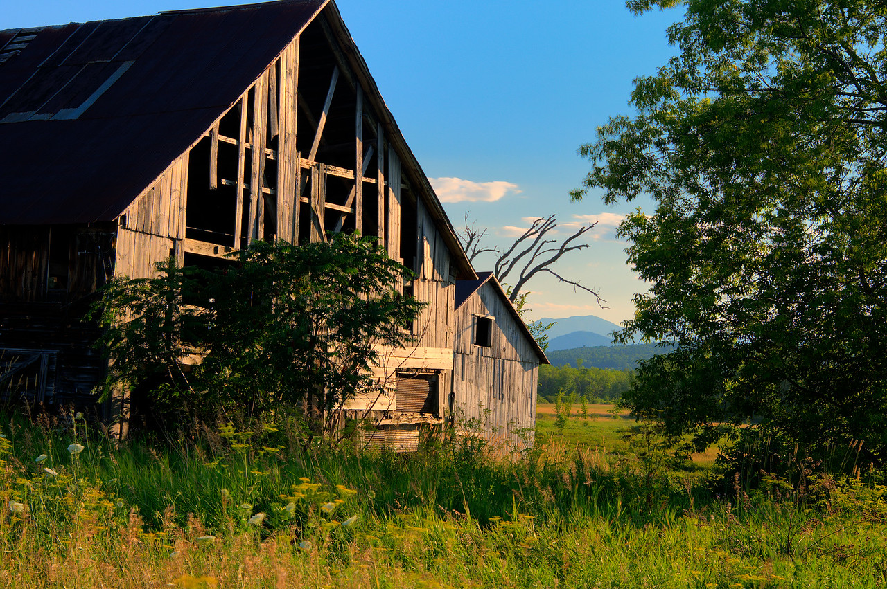 July 16 - Old Barn, Willsboro, NY.
