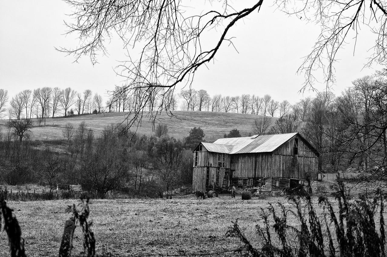 November 23 - Giles Road, Broodfield on a rainy day