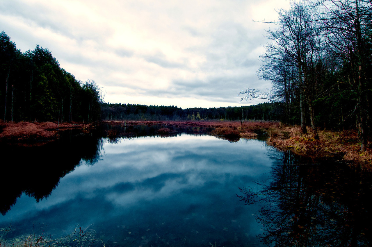 November 30 - Lost Pond
