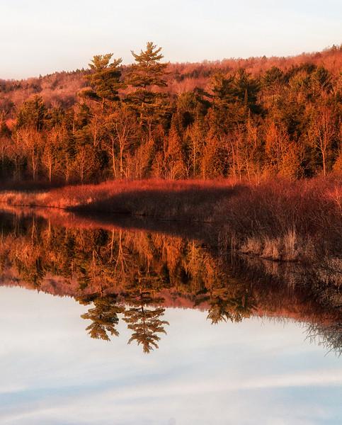 November 24 - Happy Thanksgiving!  Beaver Creek.