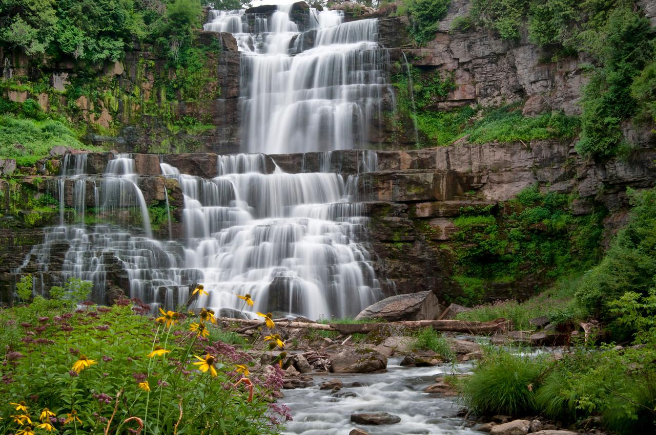 August 9 - Chittenango Falls.