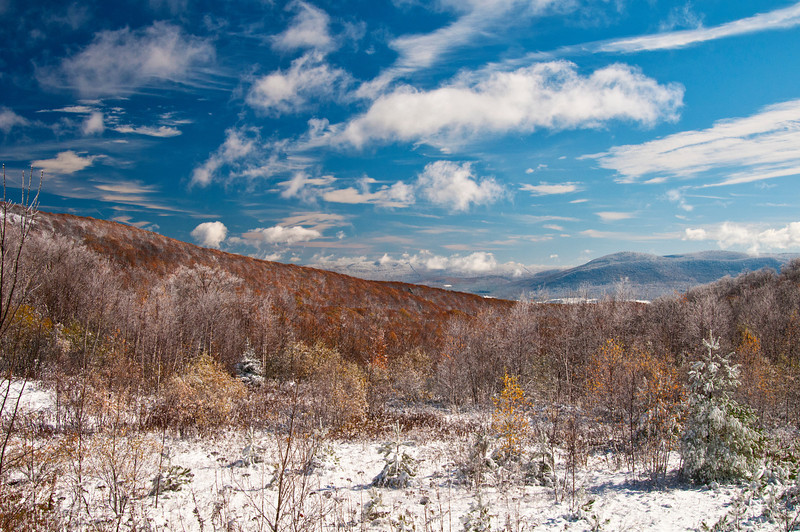 October 28 - Petersberg Pass on the New York/Massachusetts boarder looking east in the Berkshires.  First snowfall.