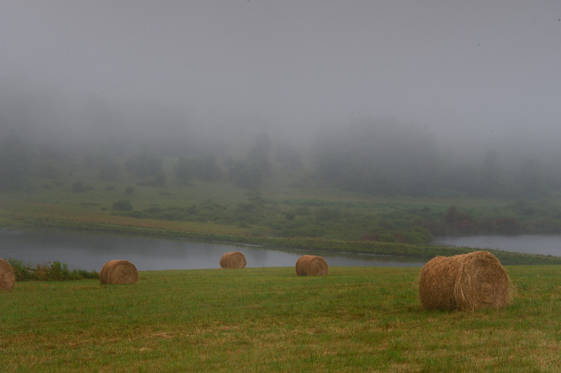 July 19 - Morning Fog.  About 1/2 mile up my road.