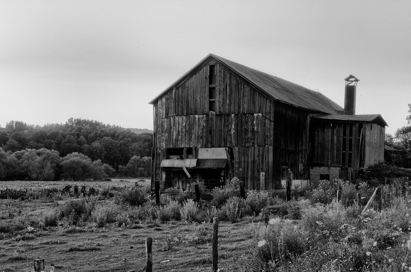 July 31 - This wraps up my 7th month of doing a photograph everyday.  It opens my eyes everyday!  This barn is between New Berlin and South Edmeston.