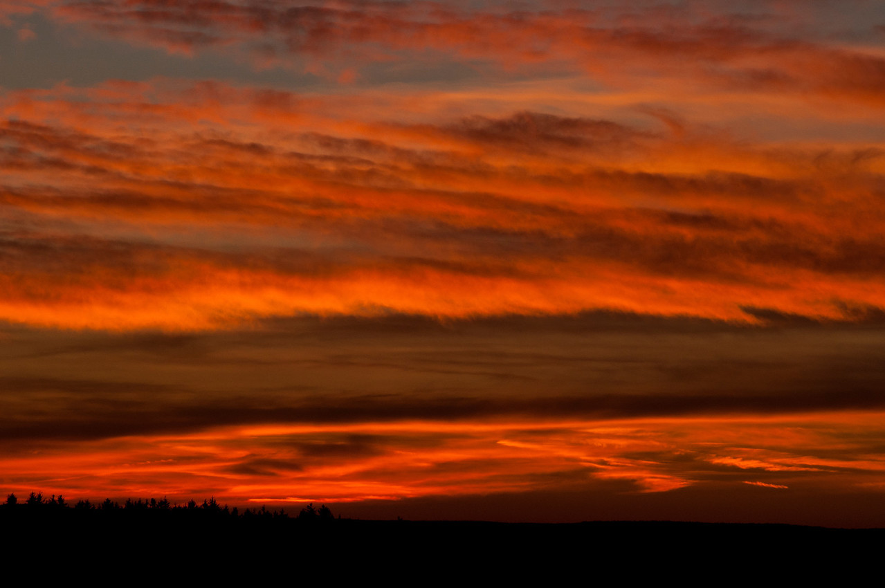 November 25 - Sunset today