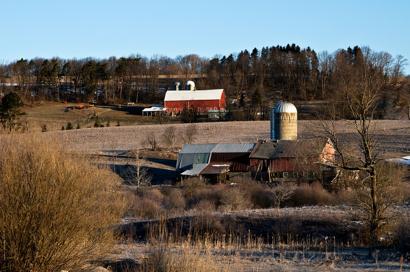 March 27 - Contrasts.  Considered photographing each of these barns.  Then I realized they could be lined up together from across the valley.  Knapp Road, Sherburne, NY.