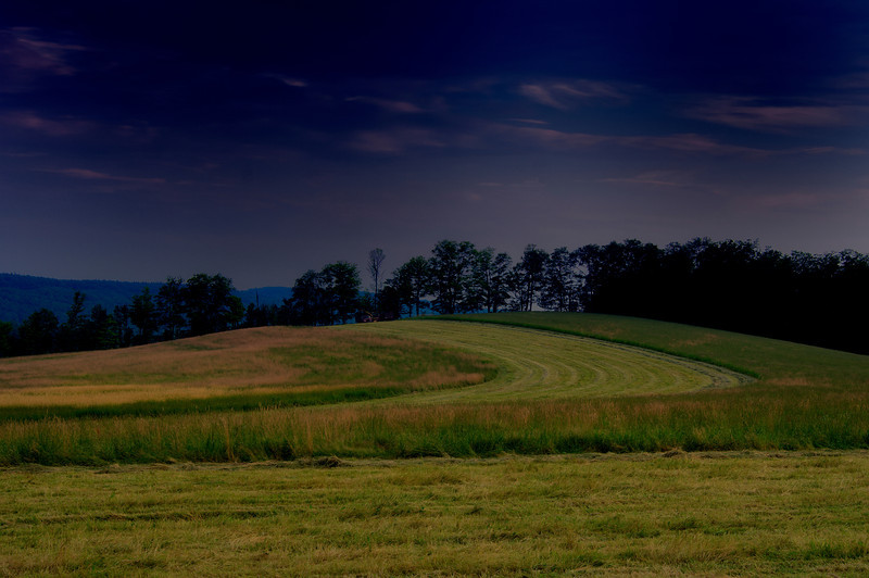 July 11 - Hayfield in southern Madison County.