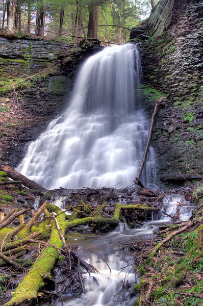 April 27 - Went stream walking today and found these falls.  Never knew they existed.