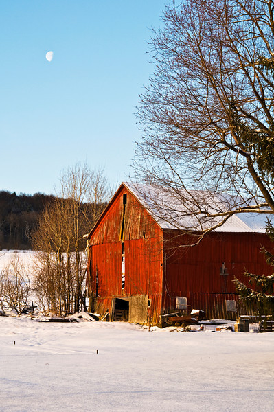 March 24 - Barn with early morning sun.  Town of Columbus, NY.