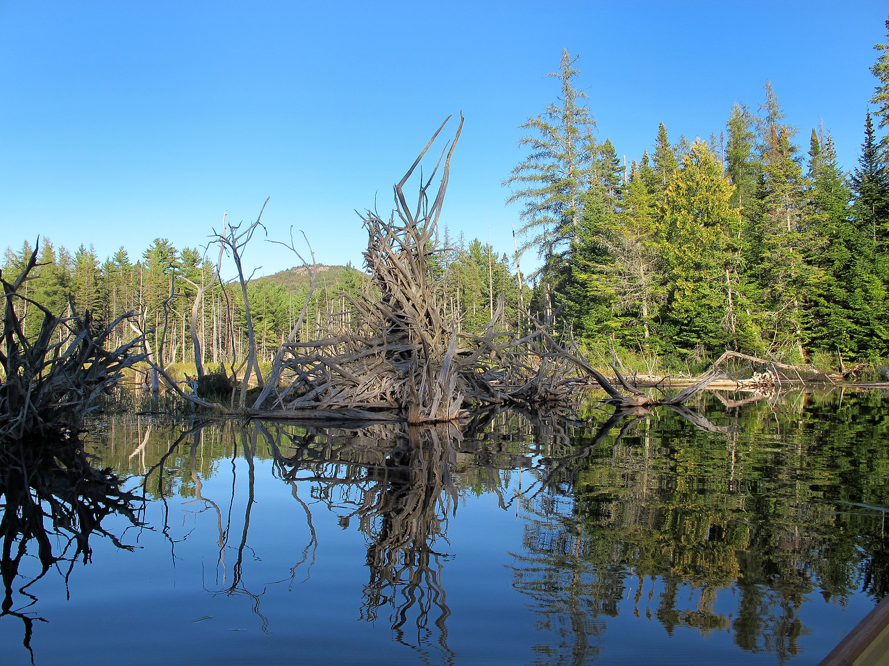 September 9 - Grasse Pond in the northern Adirondacks.