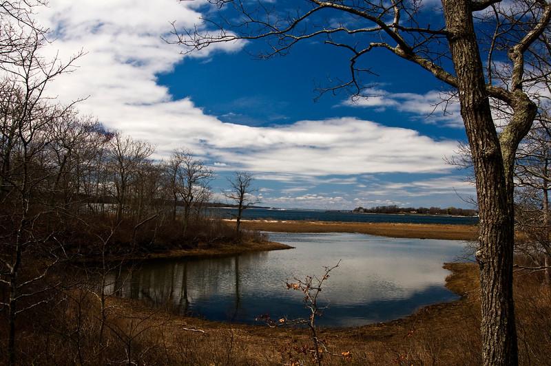April 14 - Mashomack Preserve, Shelter Island, NY