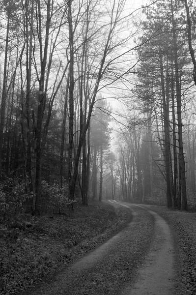 December 6 - Brookfield State Lands