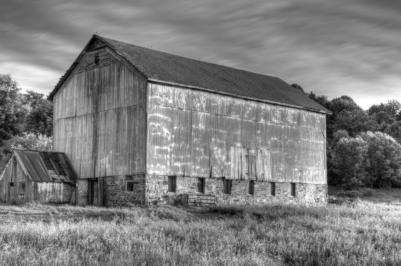June 3 - Taken in northern Otsego County about 30 miles northeast of my place.  Black and White is a great way to convey feelings.