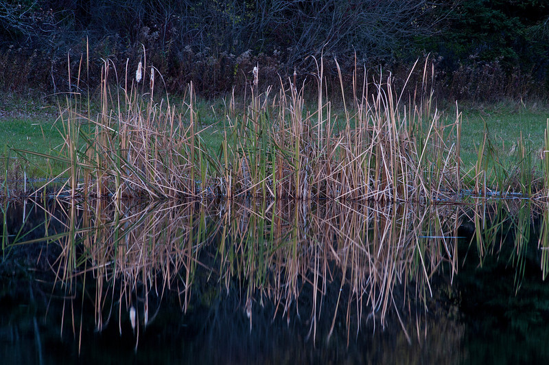 November 2 - Still doing water reflections before the ice cuts that subject off.