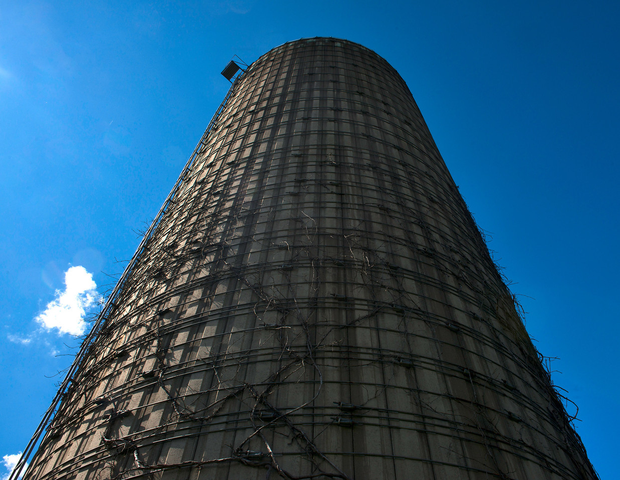 August 3 - August 3 - Silo at the Great Swamp Conservancy a bit north of Canastota, NY