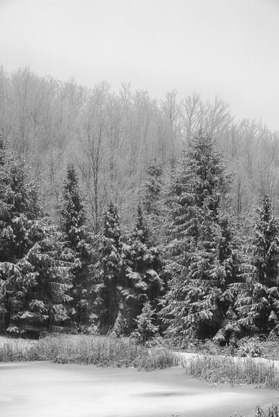 December 29